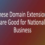 These Domain Extensions are Good for National Business